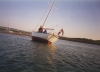 tammie_norie_aground_newtown_creek.jpg