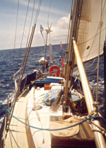 tumblernov2002